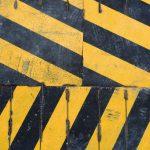 pop-zebra-355178-unsplash